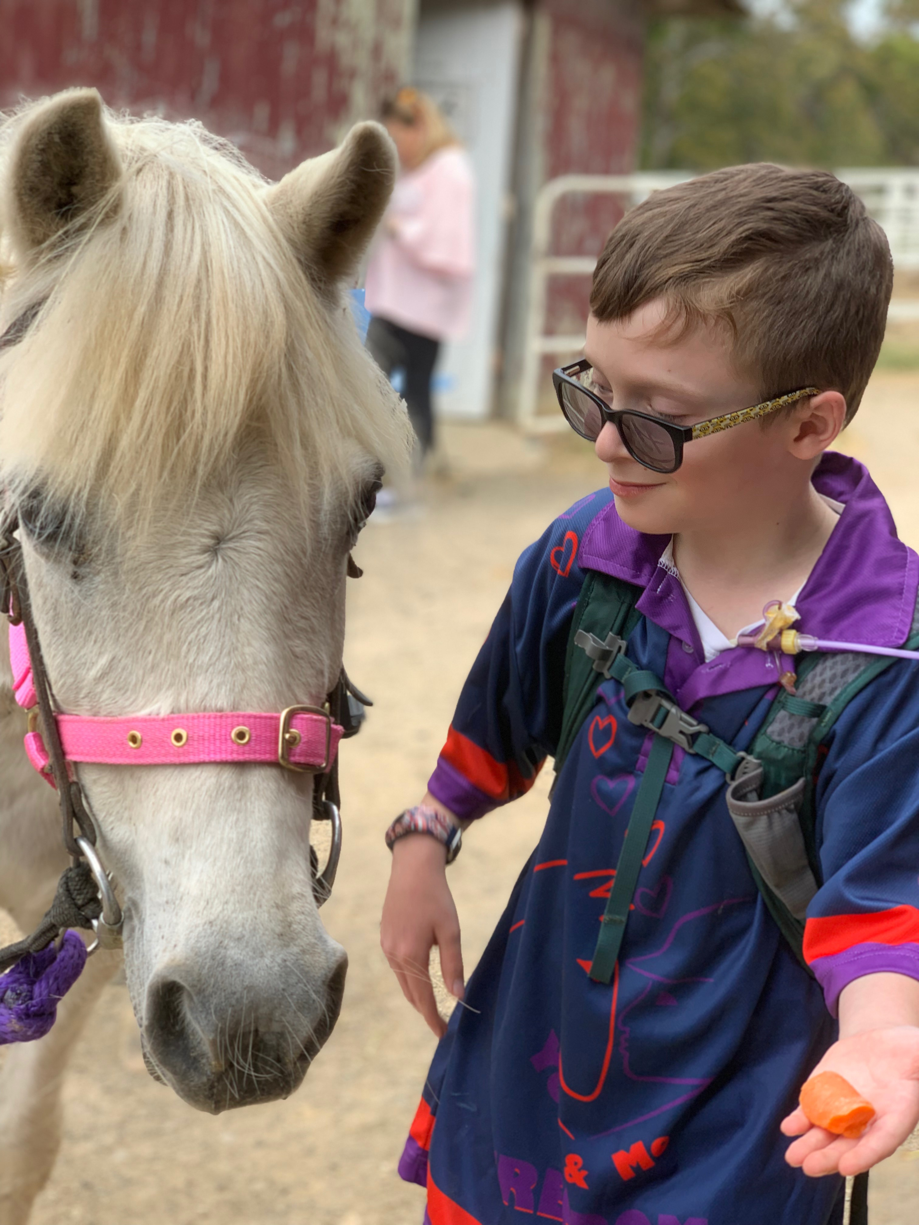 Calling All Horse Riders – Daylesford Riding for Disabled
